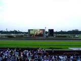 20050807-中山競馬場・花火大会-1803-DSC04221