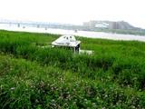 20050716-市川市・江戸川放水路・陸のボート-0915-DSC01587
