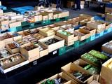 20050604-船橋市市場1・船橋中央卸売市場・ふなばし楽市-1023-DSC02470