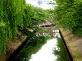 20050604-船橋市夏見・市場・海老川親水市民まつり-1047-DSC02522