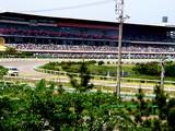 20050505-船橋若松1・船橋競馬場・第17回かしわ記念GI-1354-DSC00773