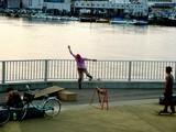 20050528-船橋市浜町2・船橋港親水公園・スケートボードの練習-1827-DSC02047
