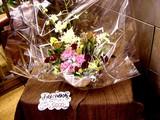 20050507-船橋市本町7・JR船橋駅・改札前フラワーショップ-1646-DSC09387