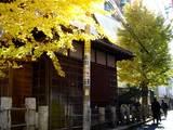 20051205-船橋市本町1・稲荷神社・黄葉-1218-DSC09982