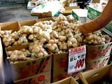 20050604-船橋市市場1・船橋中央卸売市場・ふなばし楽市-1024-DSC02475