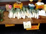 20051225-浜町西青年会・もちつき大会-1010-DSC02019