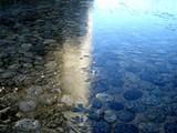 20051214-船橋市浜町・初氷-DSC00652