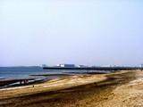 20050416-千葉市美浜区美浜・幕張海浜公園・人工海浜幕張の浜-1202-DSC09005
