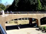 20051023-船橋アンデルセン公園-1140-DSC01351