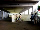 20050807-中山競馬場・花火大会-1721-DSC04139