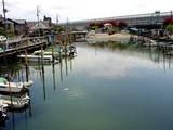20050424-船橋市宮本3・浜町2・舟だまり・引き潮-1141-DSC09442