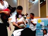 20050716-ららぽーとわんリンピック-1417-DSC01714.JPG