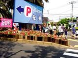 20050505-船橋市浜町2・ららぽーと・花壇とポール-1349-DSC00755