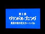 20050807-中山競馬場・花火大会-1922-DSC04335