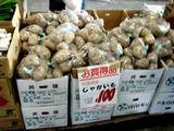 20051203-船橋中央卸売市場・ふなばし楽市-1011-DSC09606