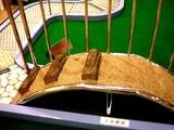 20050919-船橋市JRA中山ケイバ-1151-DSCF2339