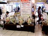 20050507-船橋市本町7・JR船橋駅・コンコースのフラワーショップ-1647-DSC09396