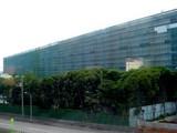 20050802-市川市塩浜・ラサール・アマゾン-0907-DSC03640