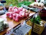 20050604-船橋市夏見・市場・海老川造形市民まつり-1046-DSC02519