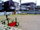 20050521-船橋市栄町1・DogStationDs-1238-DSC01611