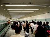 20050807-中山競馬場・花火大会-2008-DSC01284