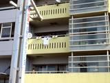 20051120-ロッテマリーンズ・幕張パレード-1043-DSC07969