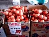 20051203-船橋中央卸売市場・ふなばし楽市-1011-DSC09605