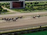 20050923-船橋競馬場・第52回日本テレビ盃-1100-DSCF2558