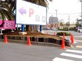 20050303-船橋市浜町2・ららぽーと・花壇・春-0843-DSC05722