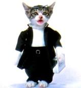 なめ猫・男子学生