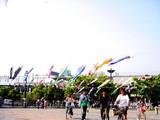 20050505-東京都江戸川区臨海町6・葛西臨海公園・こいのぼり-1521-DSC00977