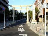 20051104-葛飾八幡宮・市川市菊花展-1435-DSC05224