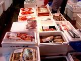 20050604-船橋市市場1・船橋中央卸売市場・ふなばし楽市-1027-DSC02485