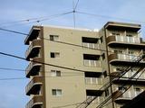 20051123-サン中央ホーム・コルギーS船橋-1350-DSC08458