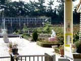 20051126-習志野市谷津バラ園-1128-DSC08637