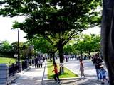 20050505-東京都江戸川区臨海町6・葛西臨海公園-1521-DSC00978