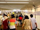 20050807-中山競馬場・花火大会-1726-DSC04155