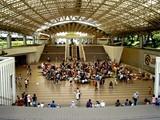 20050919-船橋市JRA中山ケイバ・フリーマーケット-1158-DSCF2356