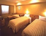 浦安市明海22・パーム&ファウンテンテラスホテル・客室