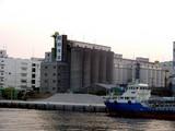 20050528-船橋市日の出2・昭和産業-1825-DSC02040