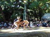 20051023-船橋大神宮・相撲大会-0931-DSC01136