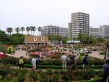 20050522-習志野市谷津3・習志野谷津公園・谷津バラ園-1136-DSC01751