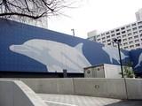 20050329-エプソン・アクアスタジアム-1320-DSC07538