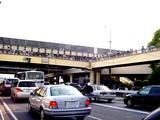 20050505-船橋若松1・船橋競馬場・第17回かしわ記念GI-1623-DSC01049