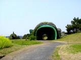 20050416-千葉市美浜区美浜・幕張海浜公園-1156-DSC08991