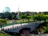 20050422-東京都江戸川区臨海町6・葛西臨海公園・こいのぼり-0823-DSC08862