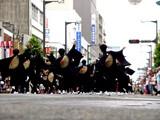 20050724-ふなばし市民まつり・YOSAKOI-1219-DSC02666