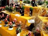 20051229-船橋駅コンコース・花屋・花飾り-1558-DSC02768