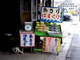 20050502-船橋市湊町1・あおやぎ・あさり-1422-DSC00194