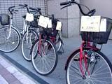 20050507-船橋市本町通り・2005きらきら春の夢ひろば-1609-DSC09357